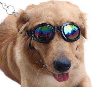 NACOCO Best Dog Goggles