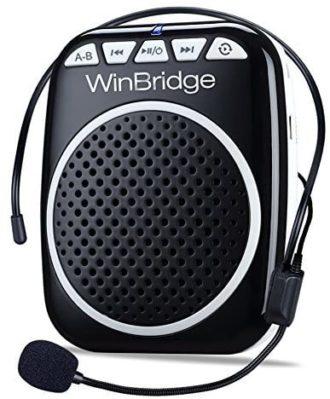WinBridge