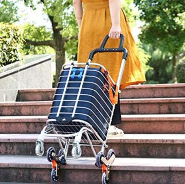 BeebeeRun Climbing Carts